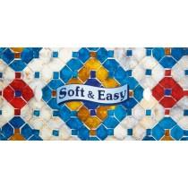 Soft & Easy chusteczki higieniczne karton 80 szt.